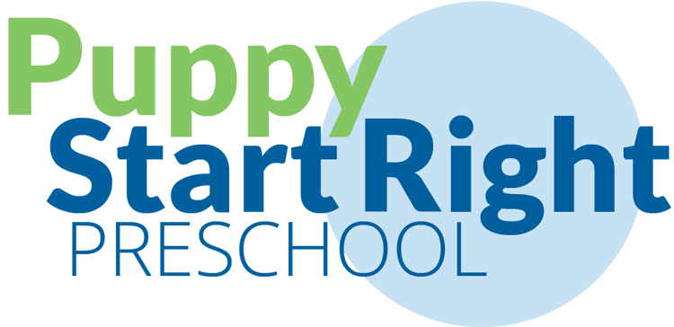 preschool-logo-2012-07-19-750